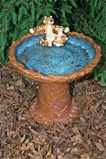 Bird bath by John Cooley
