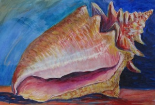 painting of conch shell by Helen Reinhold
