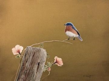 painting of songbird, Respite, by James Kinnett