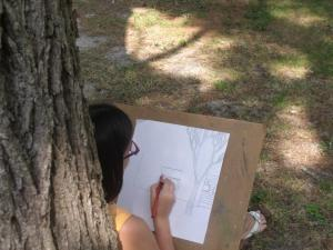 Drawing camps offered this summer!