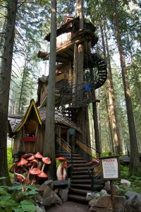 treehouse EF 3